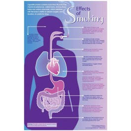 Effects of Smoking - poster