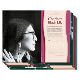 Contemporary Native Americans - poster set