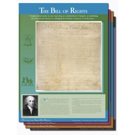 Documents That Shaped Our Nation Poster Set